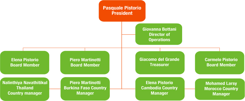 Organisational Structure of Pistorio Foundation