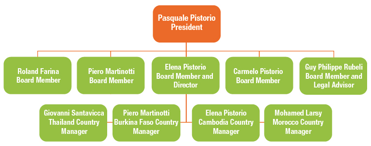 Organizational Structure of Pistorio Foundation