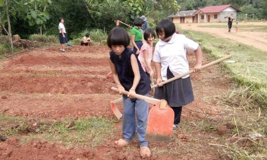 Students in Huay Kuk Village working in the village school garden plantations